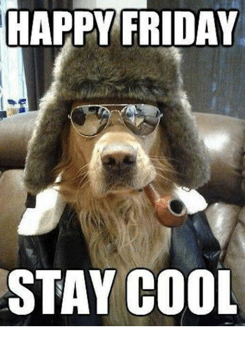 Happy Friday. Stay Cool