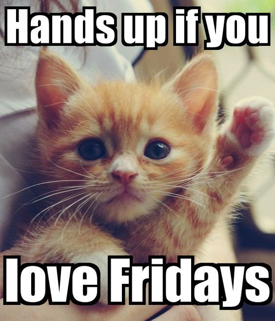 Hands up if you loev Fridays