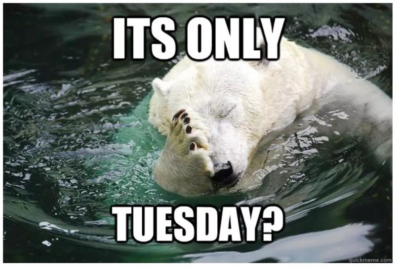is-it-only-tuesday